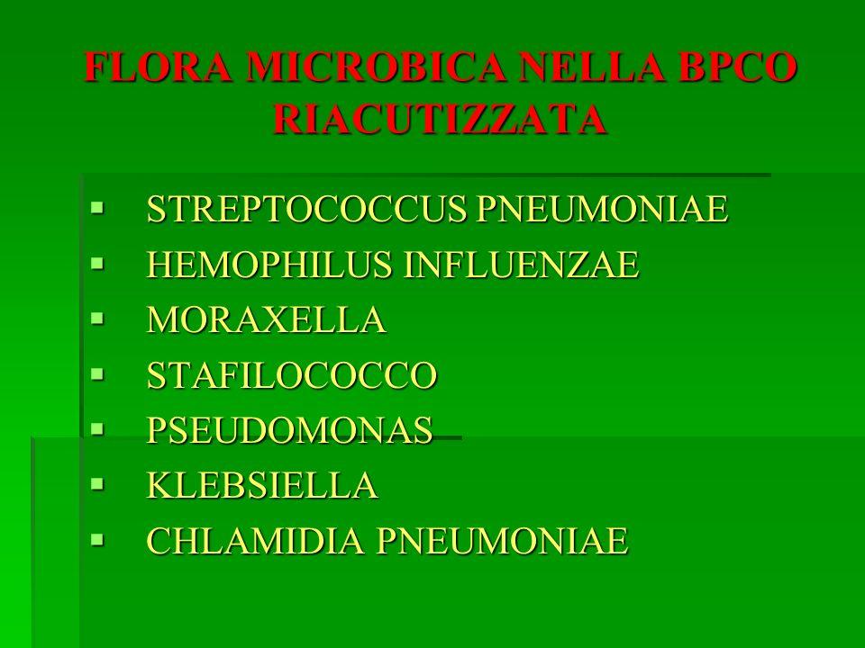 FLORA MICROBICA NELLA BPCO RIACUTIZZATA