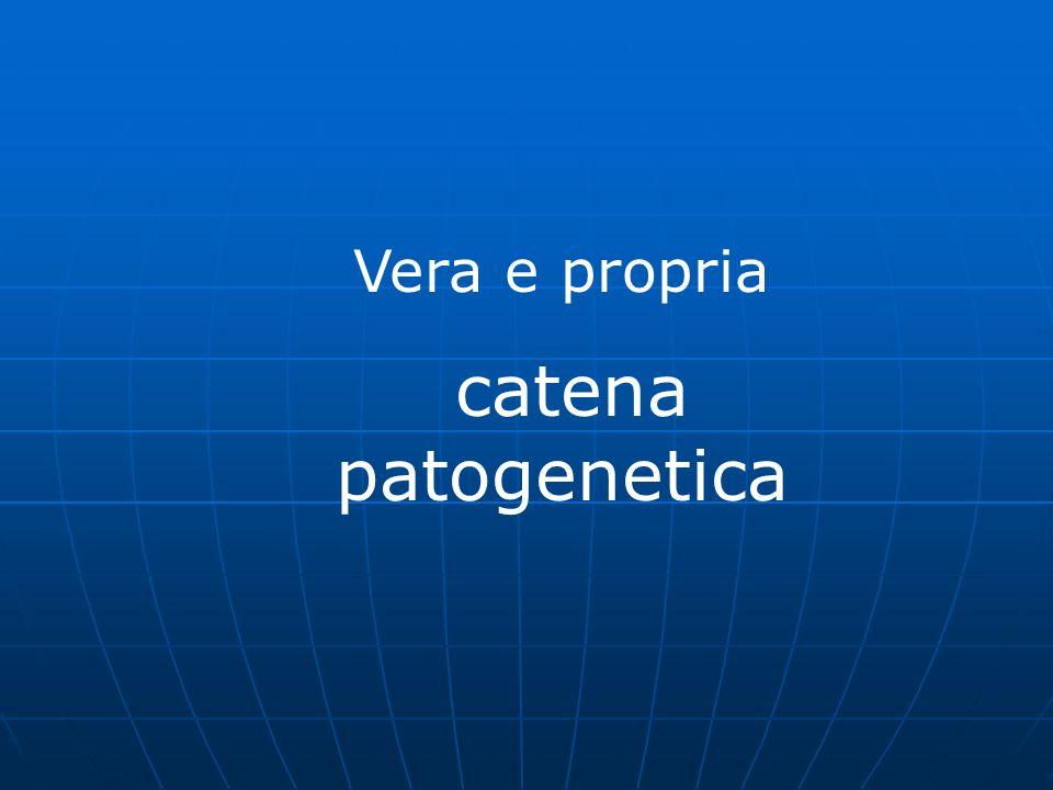 Vera e propria catena patogenetica