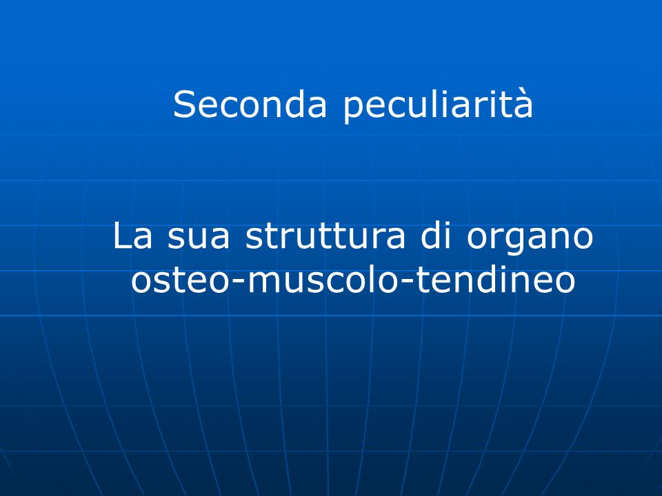 La sua struttura di organo osteo-muscolo-tendineo
