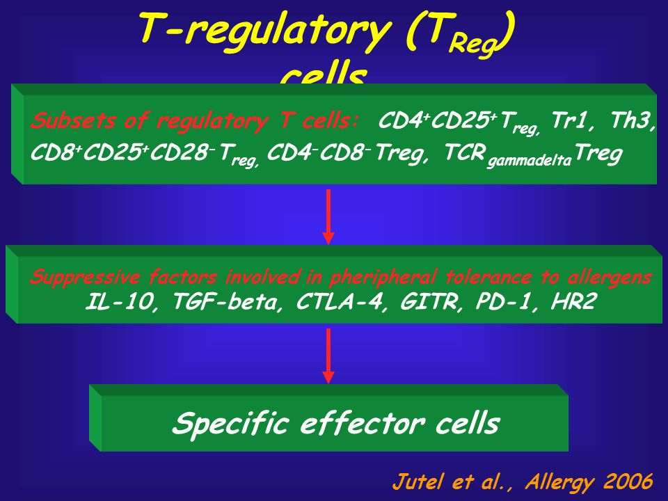 T-regulatory (TReg) cells