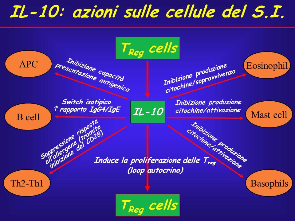 IL-10: azioni sulle cellule del S.I.