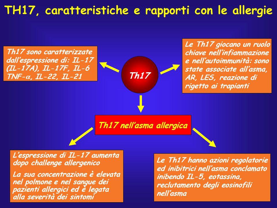 TH17, caratteristiche e rapporti con le allergie