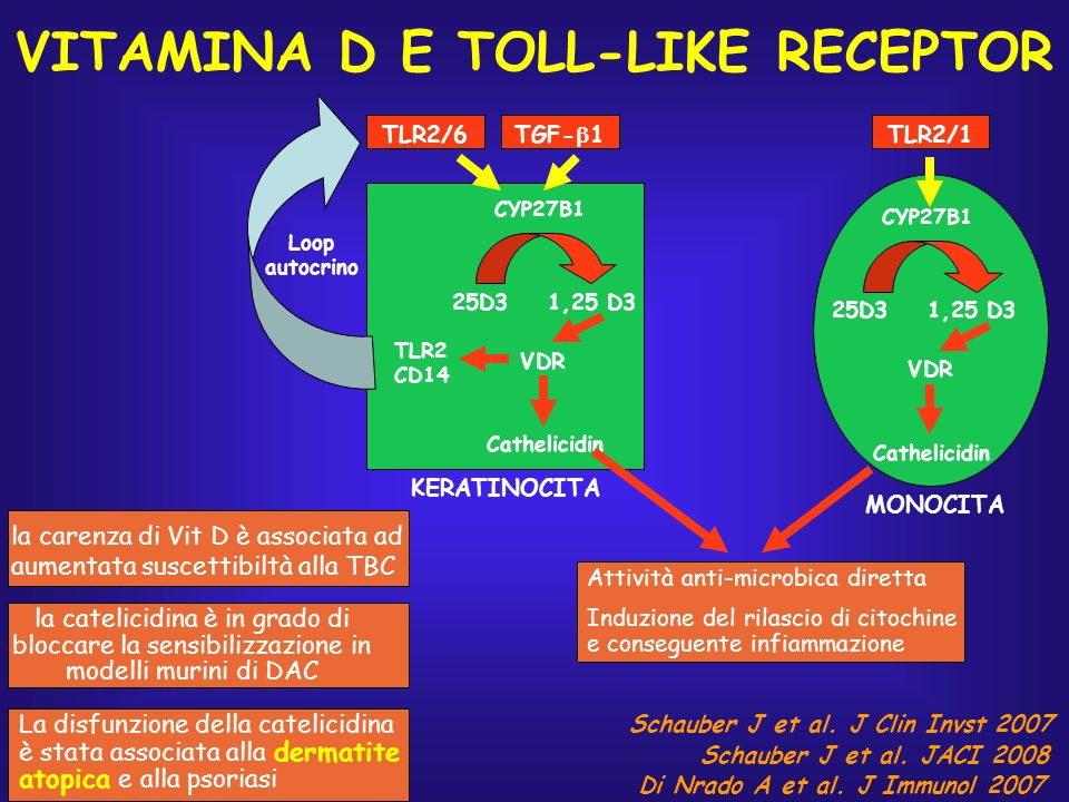 VITAMINA D E TOLL-LIKE RECEPTOR