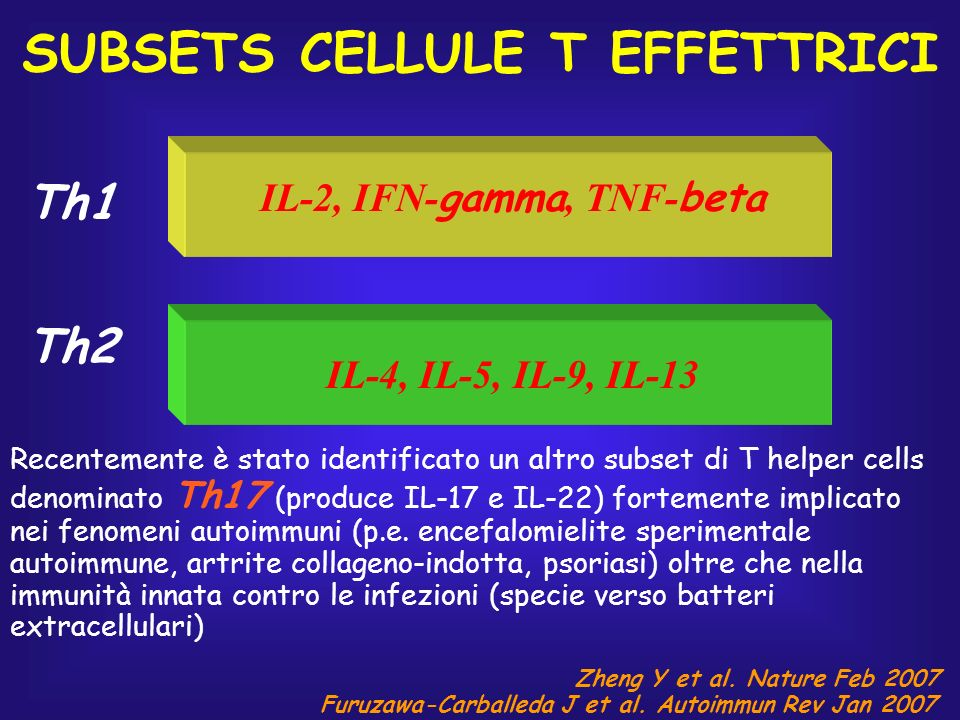 SUBSETS CELLULE T EFFETTRICI IL-2, IFN-gamma, TNF-beta