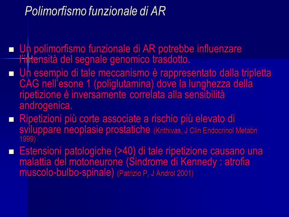 Polimorfismo funzionale di AR