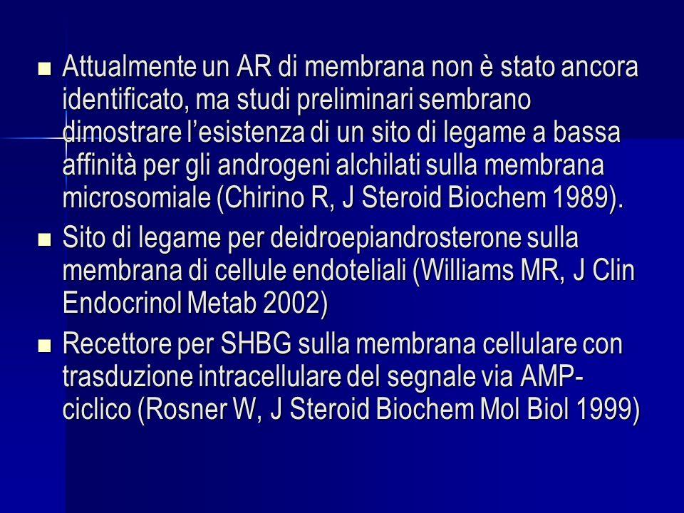 Attualmente un AR di membrana non è stato ancora identificato, ma studi preliminari sembrano dimostrare l'esistenza di un sito di legame a bassa affinità per gli androgeni alchilati sulla membrana microsomiale (Chirino R, J Steroid Biochem 1989).