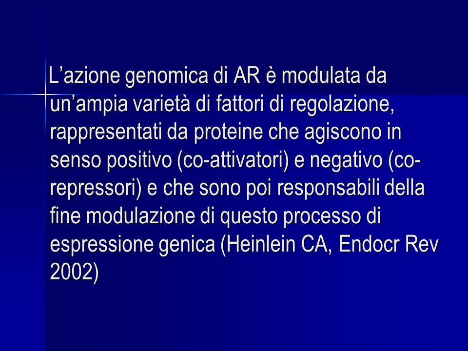 L'azione genomica di AR è modulata da un'ampia varietà di fattori di regolazione, rappresentati da proteine che agiscono in senso positivo (co-attivatori) e negativo (co-repressori) e che sono poi responsabili della fine modulazione di questo processo di espressione genica (Heinlein CA, Endocr Rev 2002)