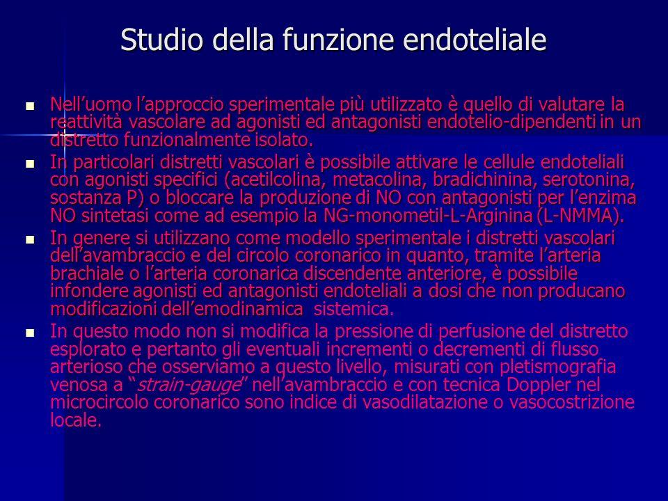 Studio della funzione endoteliale