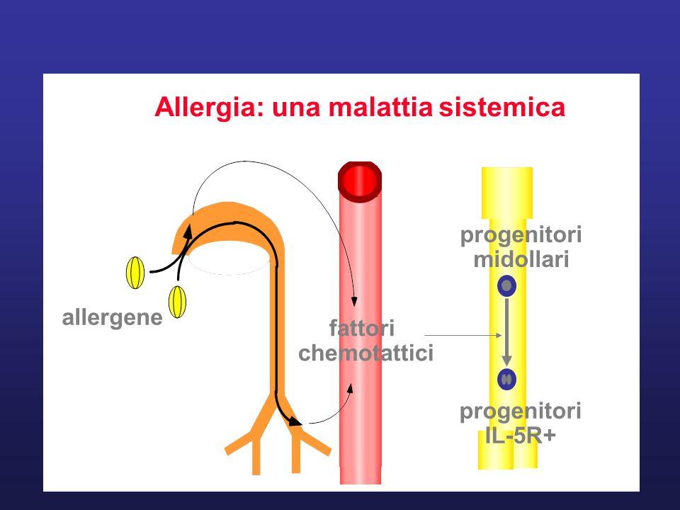 Allergia: una malattia sistemica