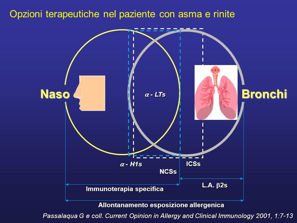 Naso Bronchi Opzioni terapeutiche nel paziente con asma e rinite