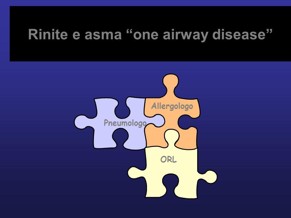 Rinite e asma one airway disease