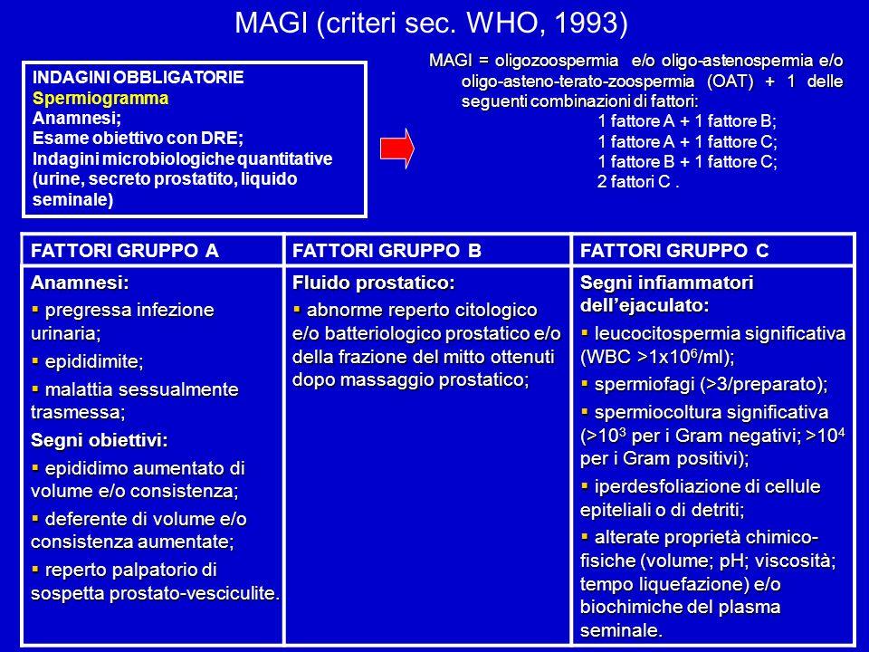 MAGI (criteri sec. WHO, 1993) FATTORI GRUPPO A FATTORI GRUPPO B