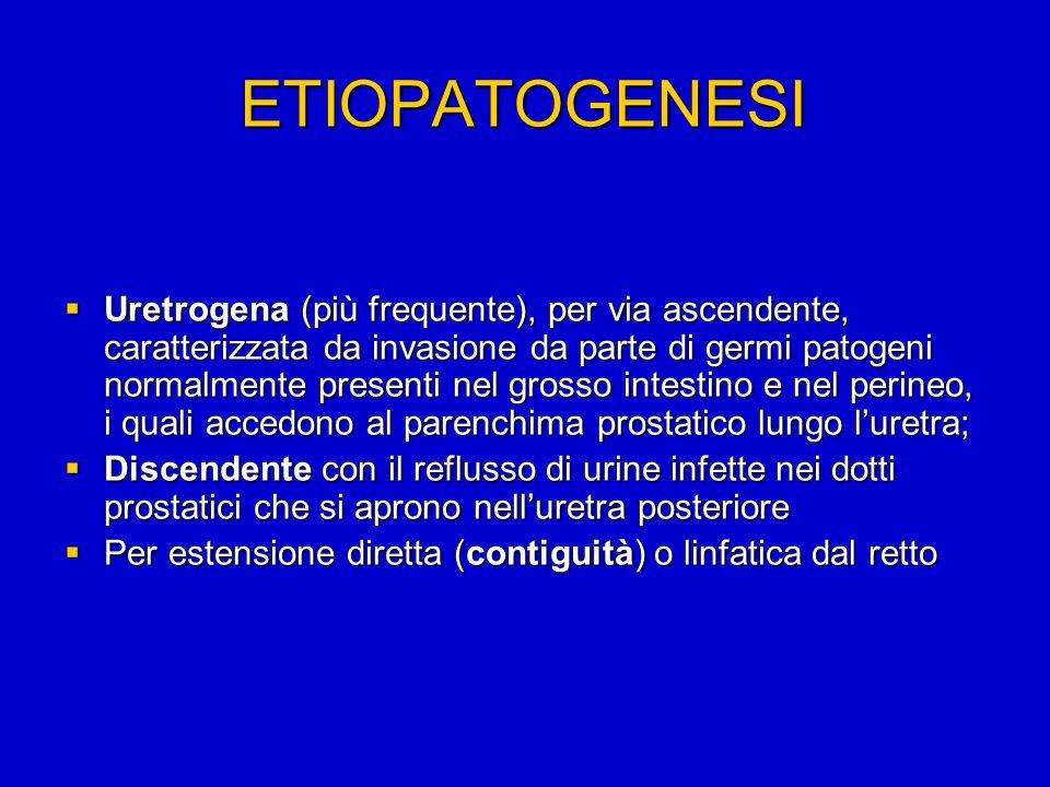 ETIOPATOGENESI