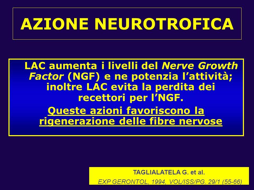 Queste azioni favoriscono la rigenerazione delle fibre nervose