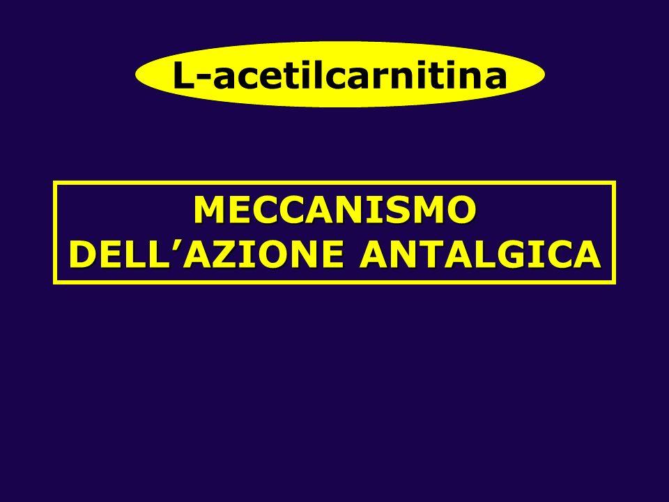 MECCANISMO DELL'AZIONE ANTALGICA