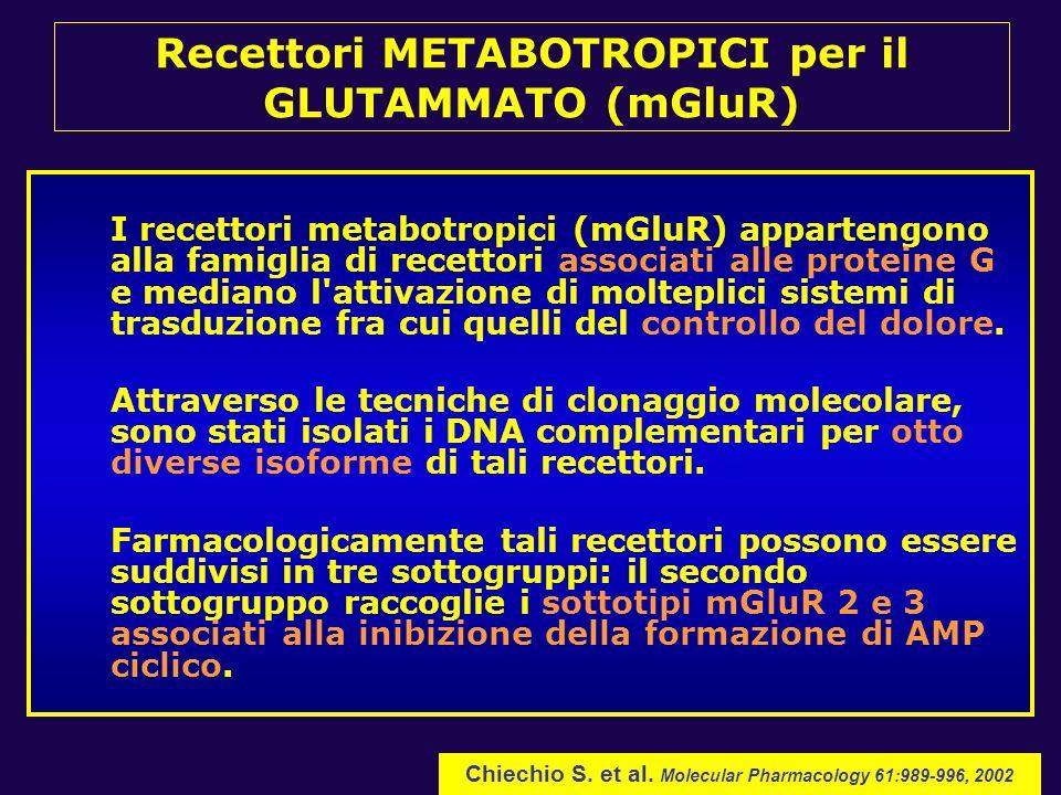 Recettori METABOTROPICI per il GLUTAMMATO (mGluR)