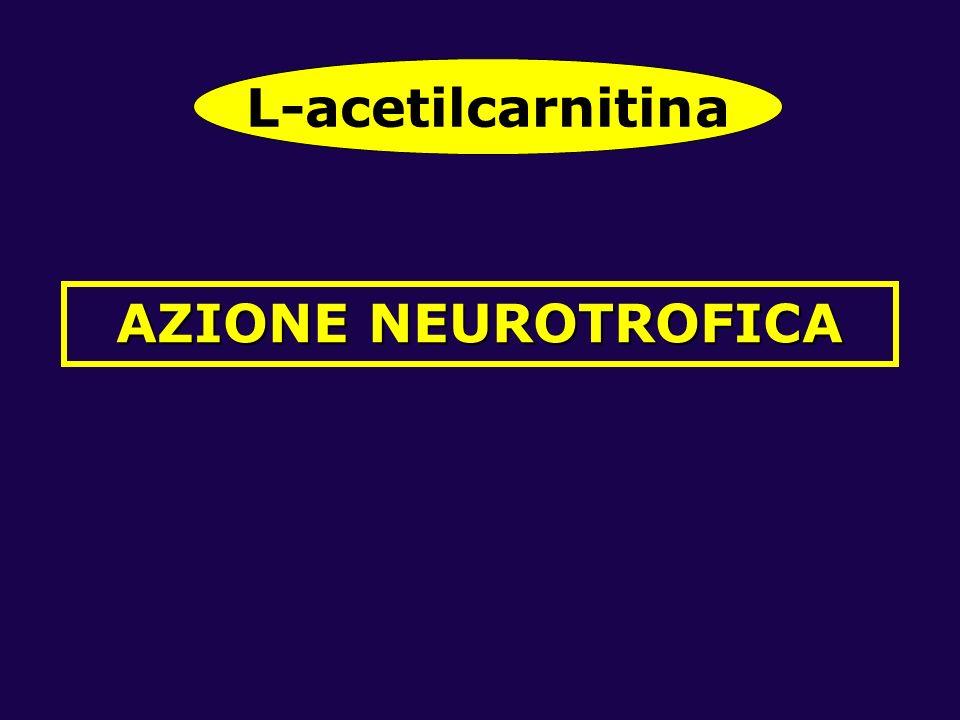 L-acetilcarnitina AZIONE NEUROTROFICA