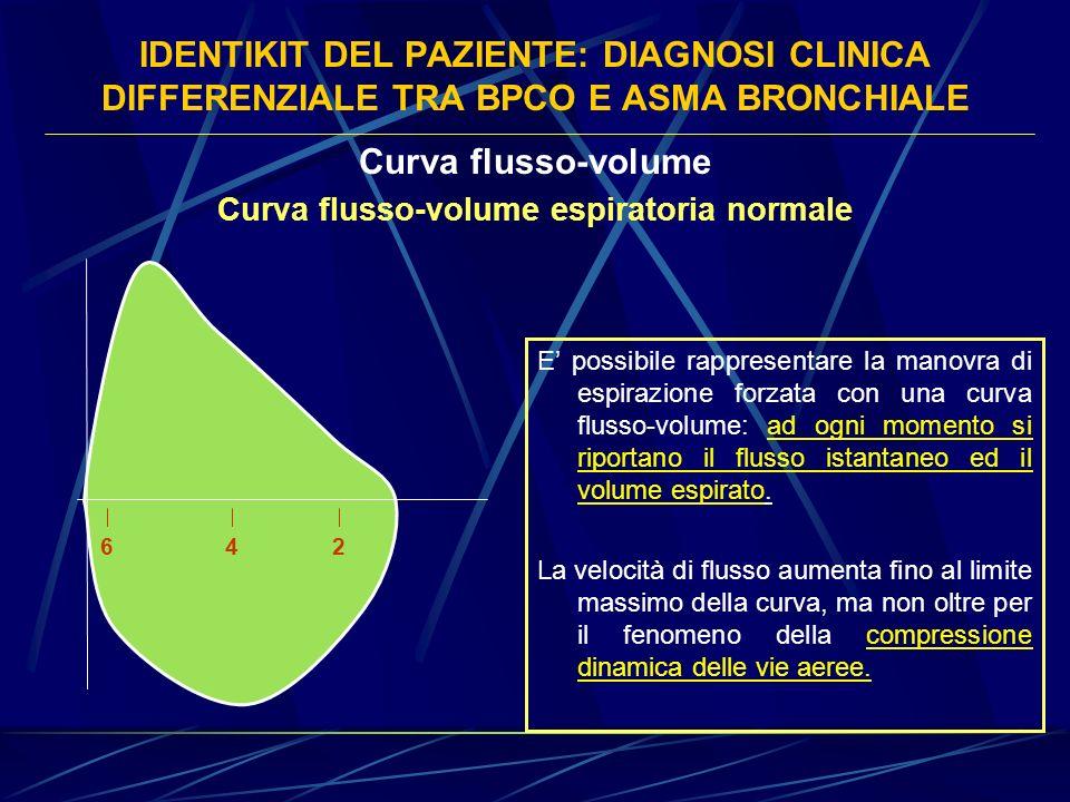 Curva flusso-volume espiratoria normale