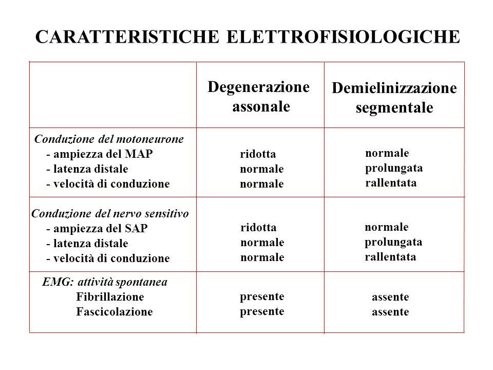 CARATTERISTICHE ELETTROFISIOLOGICHE