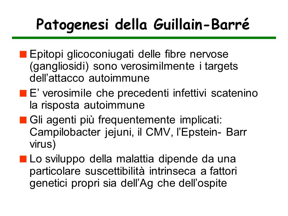 Patogenesi della Guillain-Barré