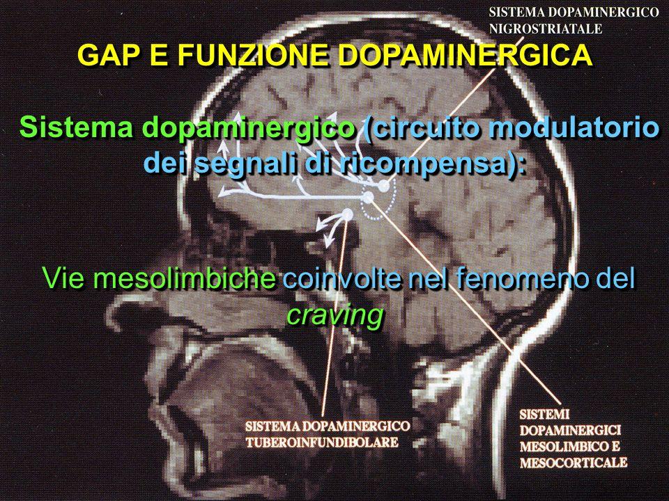 GAP E FUNZIONE DOPAMINERGICA