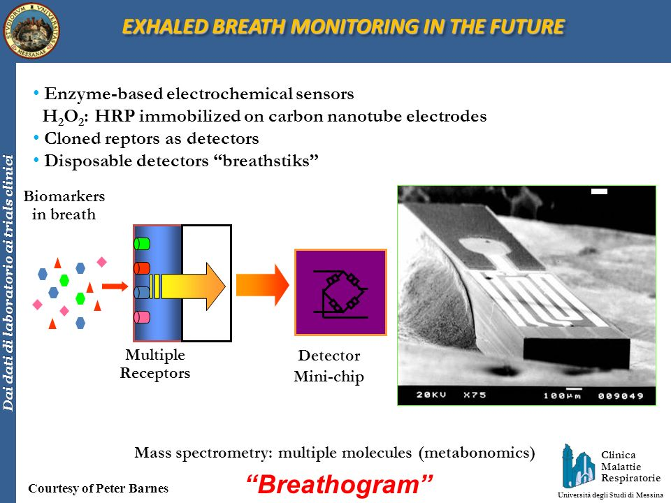 Breathogram EXHALED BREATH MONITORING IN THE FUTURE