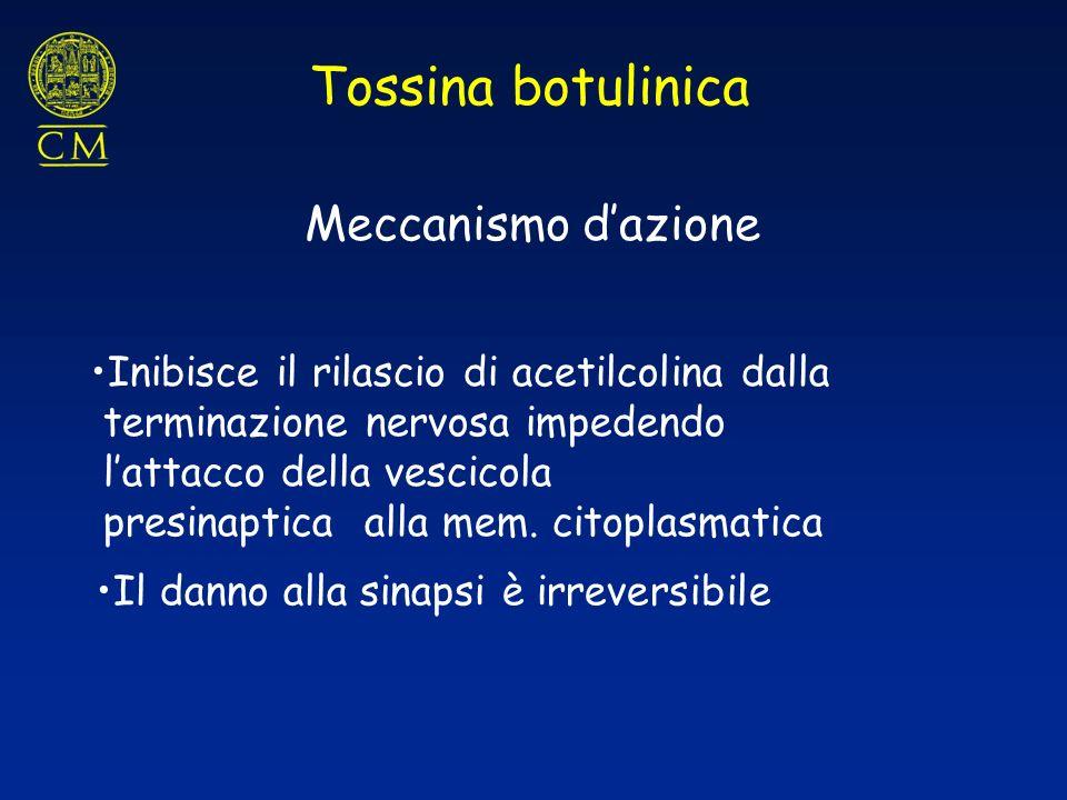 Tossina botulinica Meccanismo d'azione