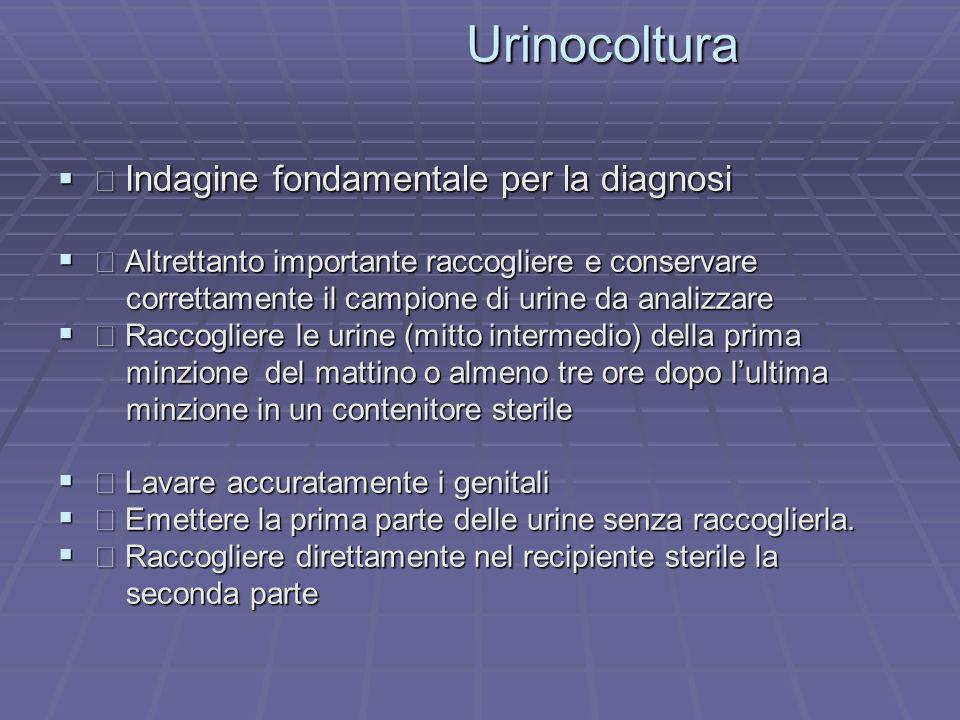 Urinocoltura  Indagine fondamentale per la diagnosi