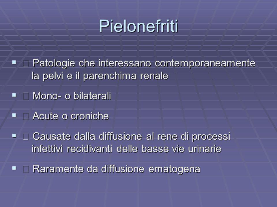 Pielonefriti  Patologie che interessano contemporaneamente
