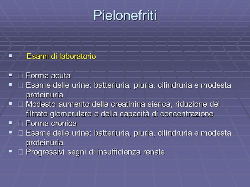 Pielonefriti Esami di laboratorio  Forma acuta