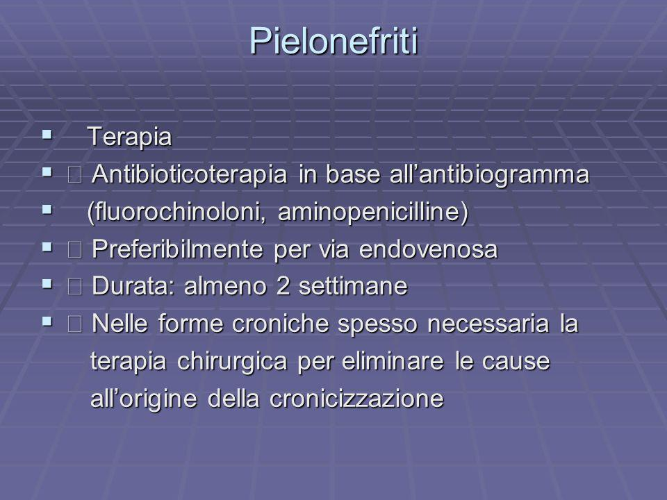 Pielonefriti Terapia  Antibioticoterapia in base all'antibiogramma