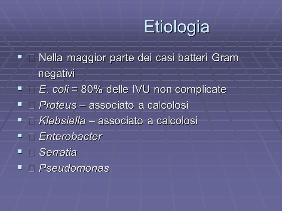 Etiologia  Nella maggior parte dei casi batteri Gram negativi
