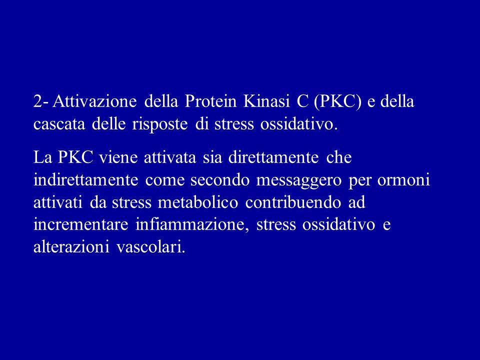 2- Attivazione della Protein Kinasi C (PKC) e della cascata delle risposte di stress ossidativo.