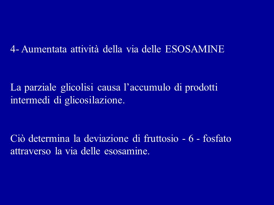 4- Aumentata attività della via delle ESOSAMINE