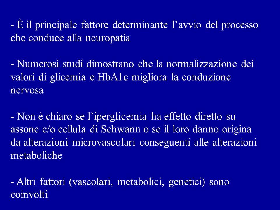- È il principale fattore determinante l'avvio del processo che conduce alla neuropatia