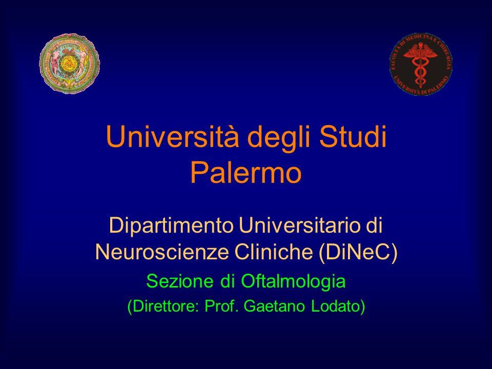 Università degli Studi Palermo