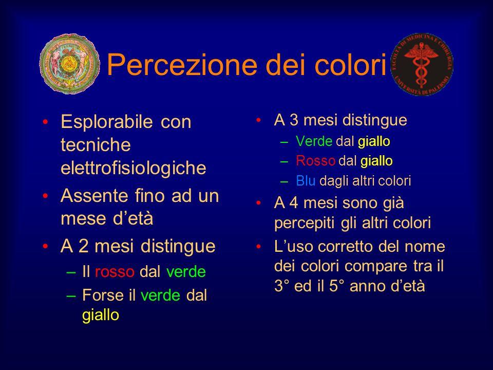 Percezione dei colori Esplorabile con tecniche elettrofisiologiche