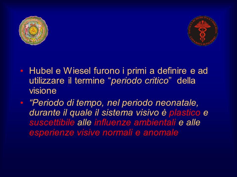 Hubel e Wiesel furono i primi a definire e ad utilizzare il termine periodo critico della visione
