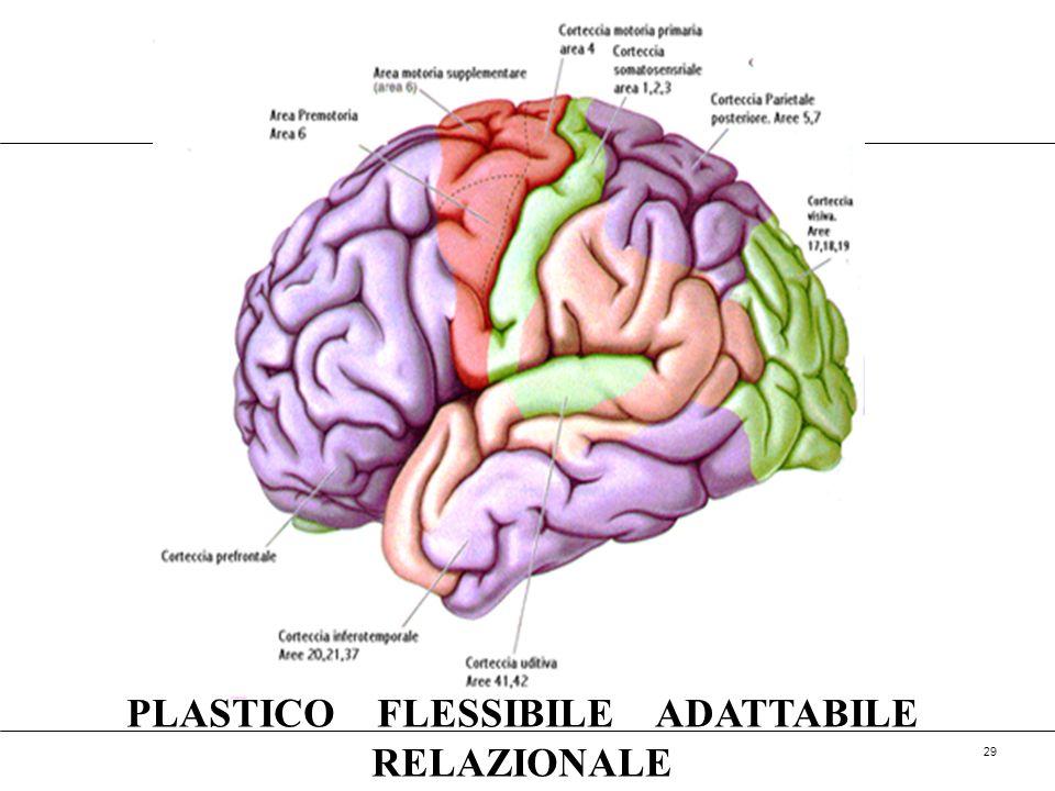 PLASTICO FLESSIBILE ADATTABILE RELAZIONALE