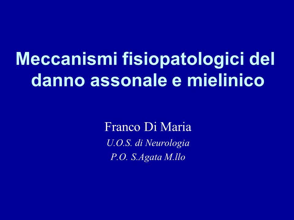 Meccanismi fisiopatologici del danno assonale e mielinico