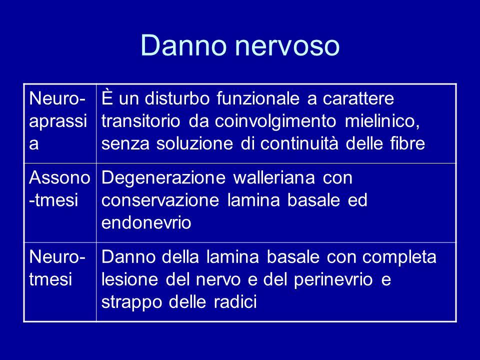 Danno nervoso Neuro-aprassia