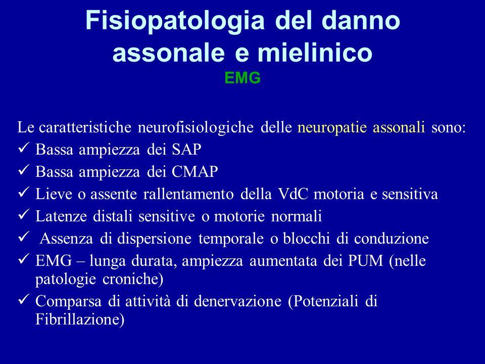 Fisiopatologia del danno assonale e mielinico EMG