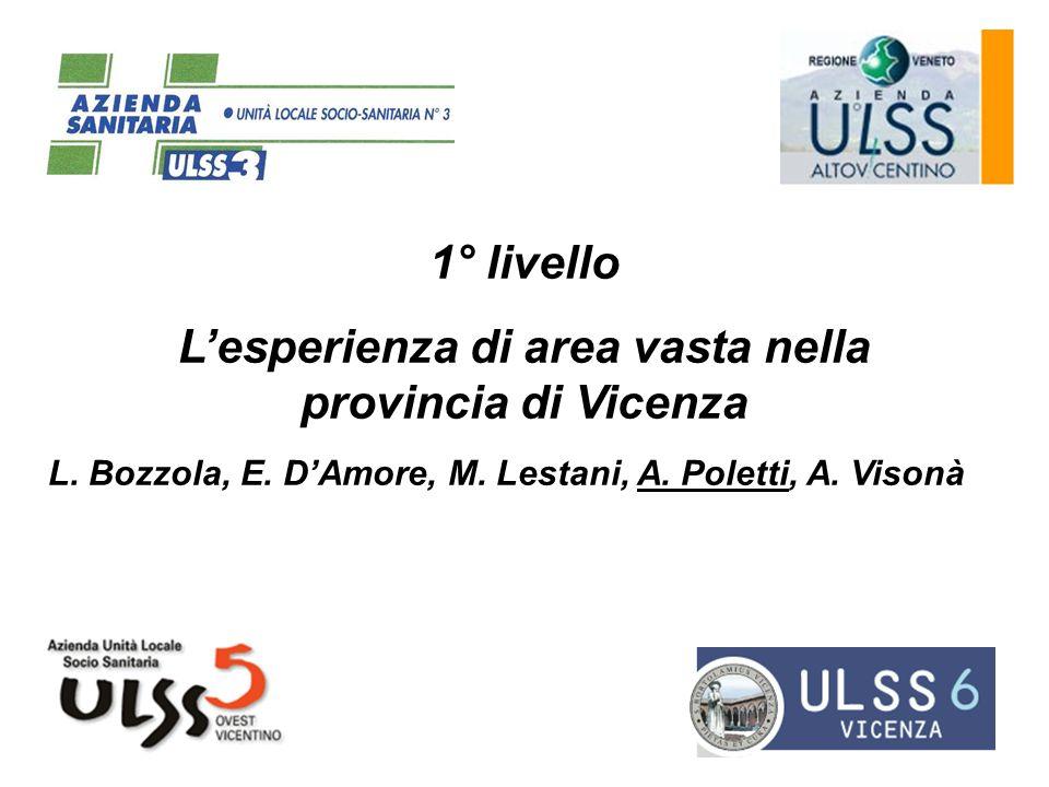 L'esperienza di area vasta nella provincia di Vicenza