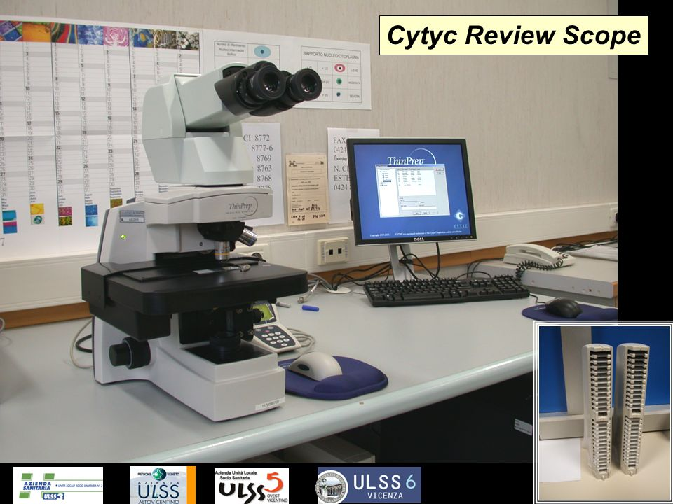 Cytyc Review Scope