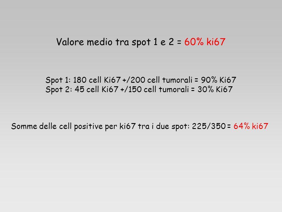 Valore medio tra spot 1 e 2 = 60% ki67