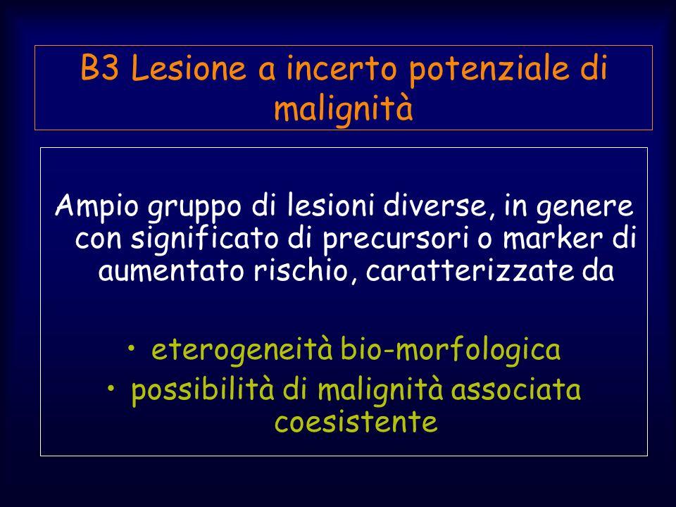 B3 Lesione a incerto potenziale di malignità