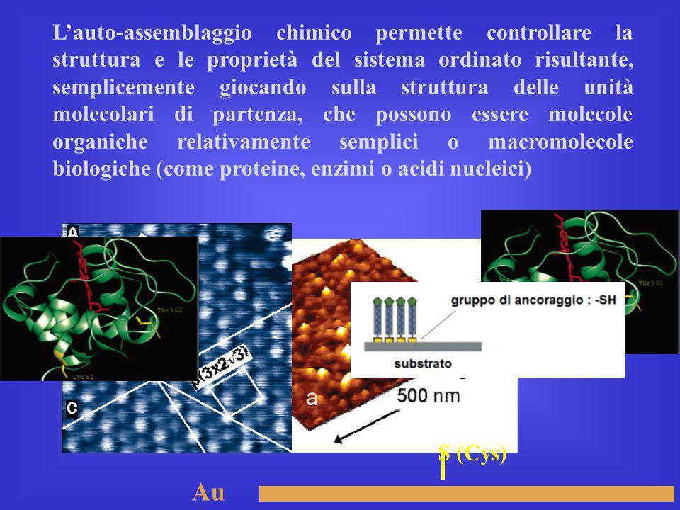 L'auto-assemblaggio chimico permette controllare la struttura e le proprietà del sistema ordinato risultante, semplicemente giocando sulla struttura delle unità molecolari di partenza, che possono essere molecole organiche relativamente semplici o macromolecole biologiche (come proteine, enzimi o acidi nucleici)