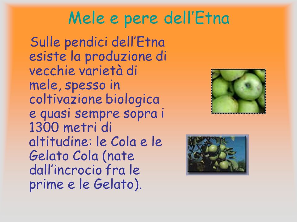 Mele e pere dell'Etna
