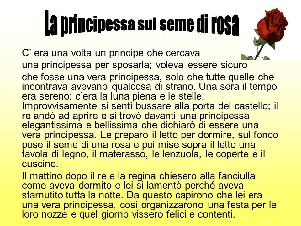 La principessa sul seme di rosa