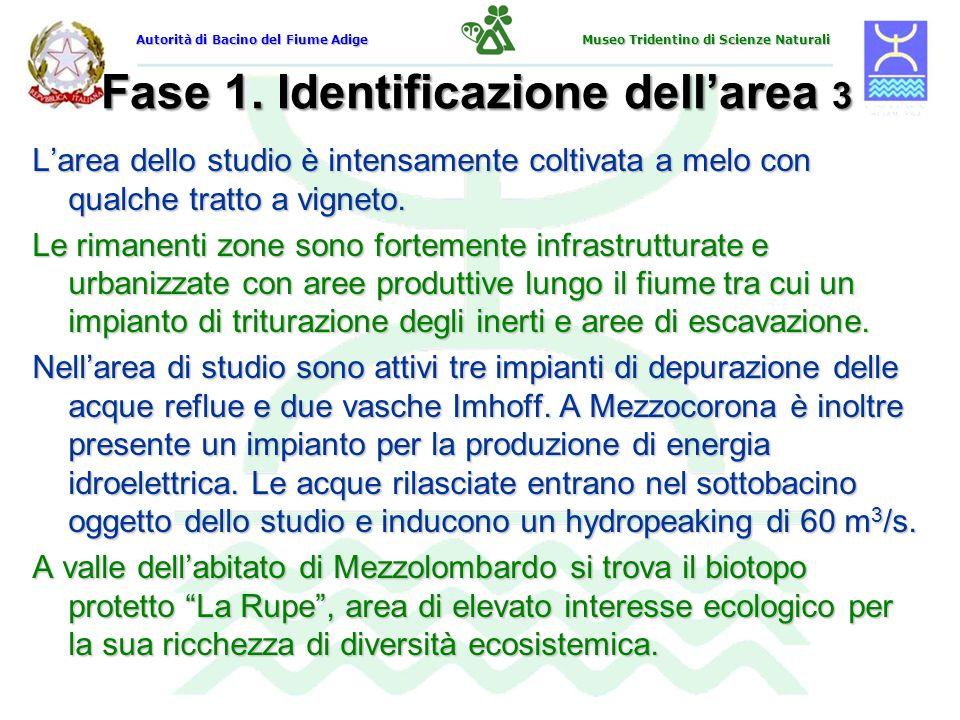Fase 1. Identificazione dell'area 3